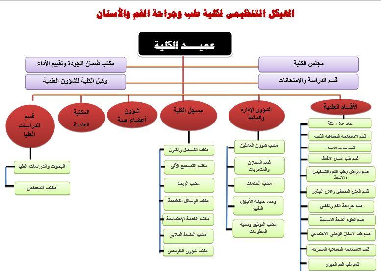 الهيكل التنظيمي لكلية الاسنان
